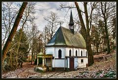 The little forest chapel (Bert Kaufmann) Tags: wood holland church netherlands forest nederland kirche chapel bos kerk eglise hdr fort olanda roermond limburg niederlande kapelle 1892 servaas kapel servatius haelen leudal nunhem servaaskapel boskerk