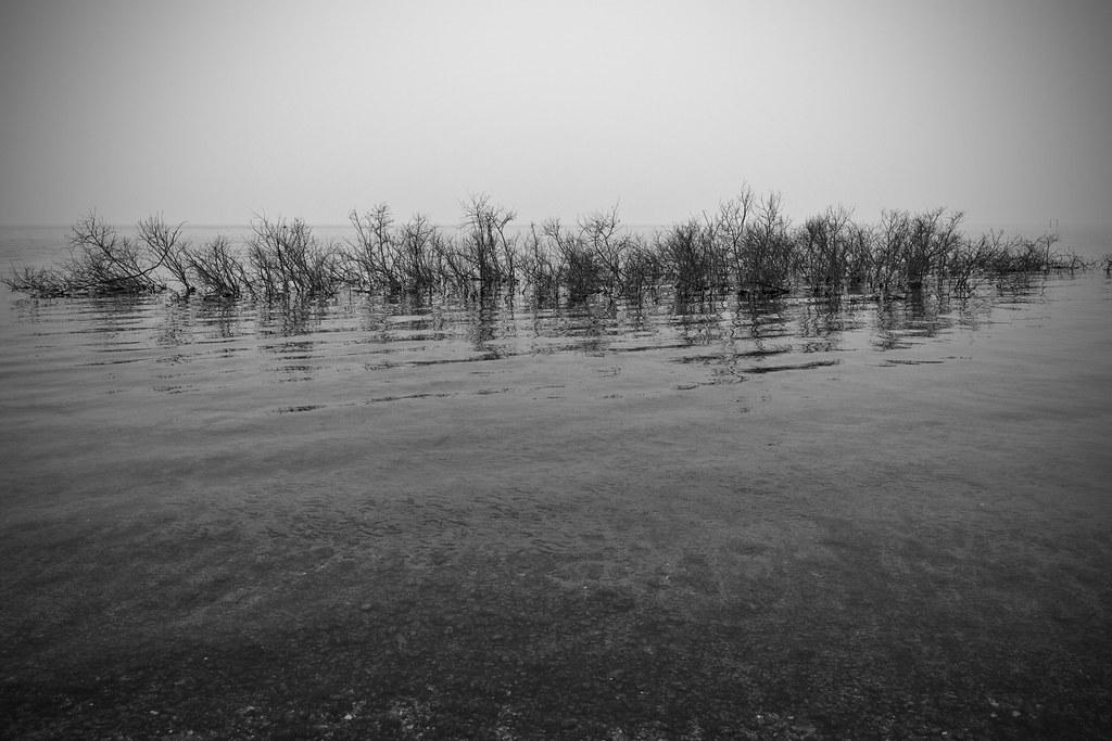 Liquid Loneliness #2