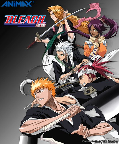 ANIMAX_Bleach Season 2 keyart