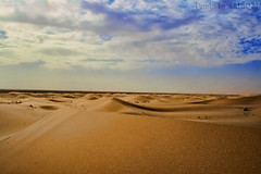 The Desert HDR (TARIQ-M) Tags: texture landscape sand waves desert dunes riyadh saudiarabia hdr  canonefs1855      canon400d
