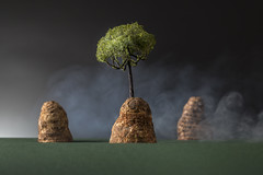 Island (William John Cooper) Tags: studio studiolighting lighting flash tabletop tabletopphotography still stilllife art fineart food paper landscape miniature model dark grey greysky green tree mist misty smoke island islands