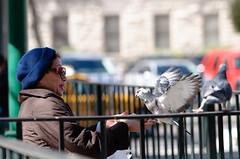 Bird Lady (guitar_guy599) Tags: street nikon san downtown texas antonio 70200 d90 vrii