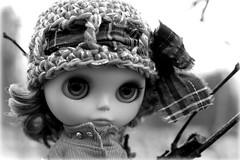 Little Lady (29/365)