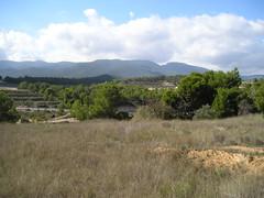 Parcela urbana en Ibi muy cerca de Alicante, con posibilidad de construir un chalet orientada al sur, infórmese en inmobiliaria benidorm. Consulte precio a su inmobiliaria en Benidorm, Asegil www.inmobiliariabenidorm.com