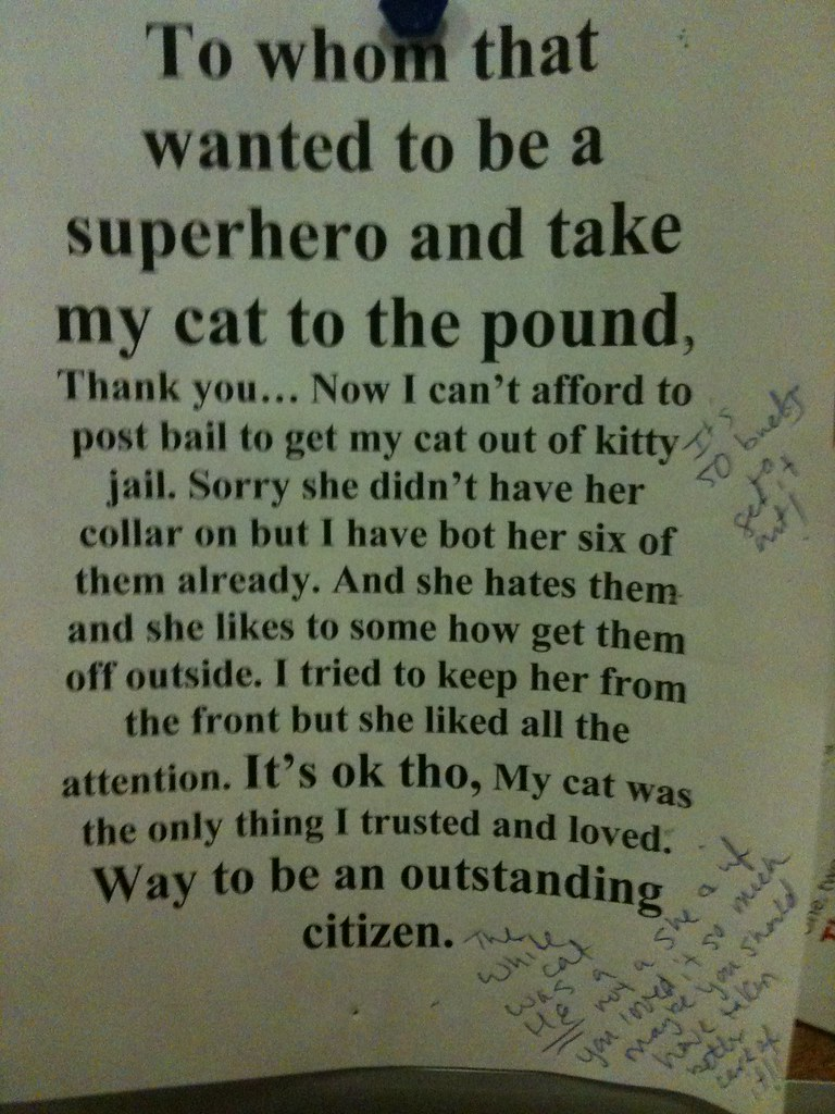 To whom that wanted to be a superhero and take my cat to the pound, Thank you...Now I can't afford to post bail to get my cat out of kitty jail. Sorry she didn't have her collar on but I have bot [sic] her six of them already. And she hates them and she likes to some how get them off outside. I tried to keep her from the front but she liked all the attention. It's ok tho, My cat was the only thing I trusted and loved. Way to be an outstanding citizen.