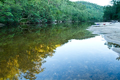 river wild (elyse patten) Tags: blue sunset reflection tree green water yellow colo creek river still sand kayak afternoon sydney australia canoe adventure kayaking wilderness canoeing wollemi wolleminationalpark elysepatten