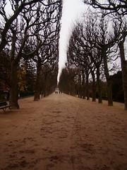 !...! - Paris (Darqos) Tags: road autumn trees winter paris france cold tree arbol arboles camino path perspective line otoo invierno perspectiva dust francia frio sendero barro linea tierra mudd huellas