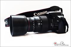 sigma 70-300mm (Abeer Hussein) Tags: macro canon sigma apo 70300mm dg عدسة 450d كانون كاميرة زوم