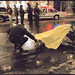 Jackie - carriage horse electrocuted in NYC