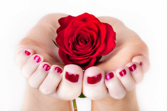 holding a rose (funkygreeneyedlady) Tags: roses toes paintedtoes mearlegateseroticnudetumwater spotcoloringbbwtoes bbwfeetpaintedtoenailsrosesnudeshotsheadshotsbeautifulbbwmodeling