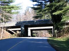 Biltmore Highway Overpass