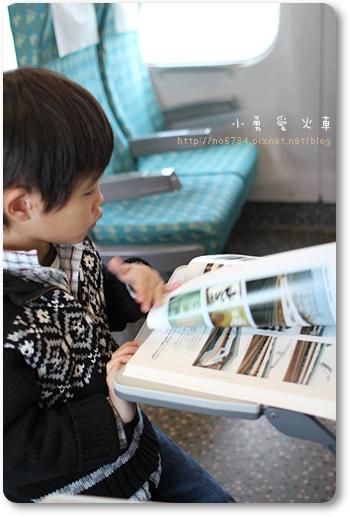 20110210_OneDayTaiNan_0018 f