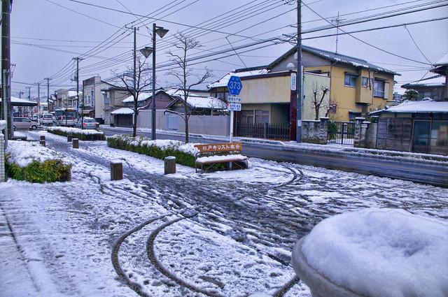 雪が積もった杉戸町