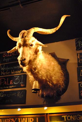 the surly fucken goat
