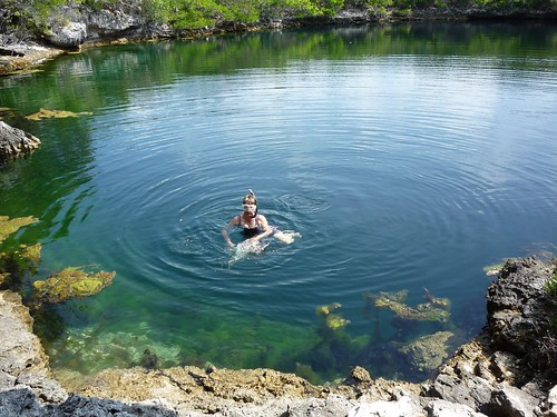 Robin swimming in blue hole