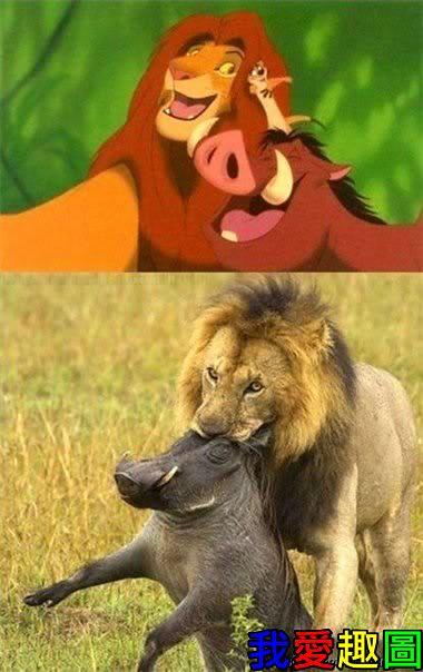 卡通片與現實的差別