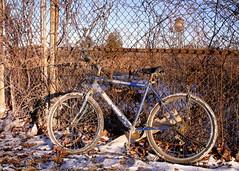 forgotten ride (dmixo6) Tags: winter canada bush february mississauga dugg dmixo6