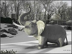 There's an elephant in the room . . . (The Berlin Turnpike) Tags: