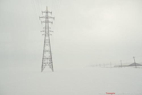 20110225-P1000214