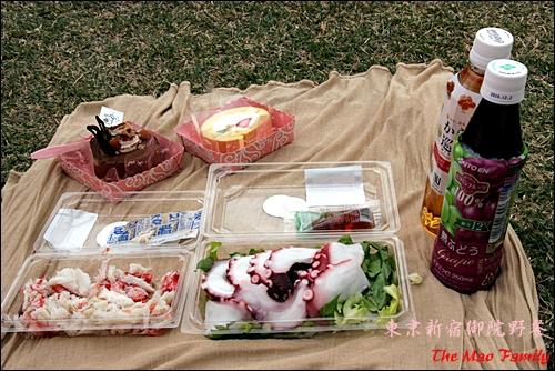 東京新宿御院賞櫻野餐