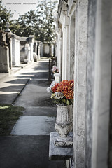 "Lafayette Cemetery ""Orange Flowers"" (coffeeandbeer80) Tags: new flowers orange white cemetery grave yellow stone 1 orleans lafayette tomb tombstone row no1 d7000"