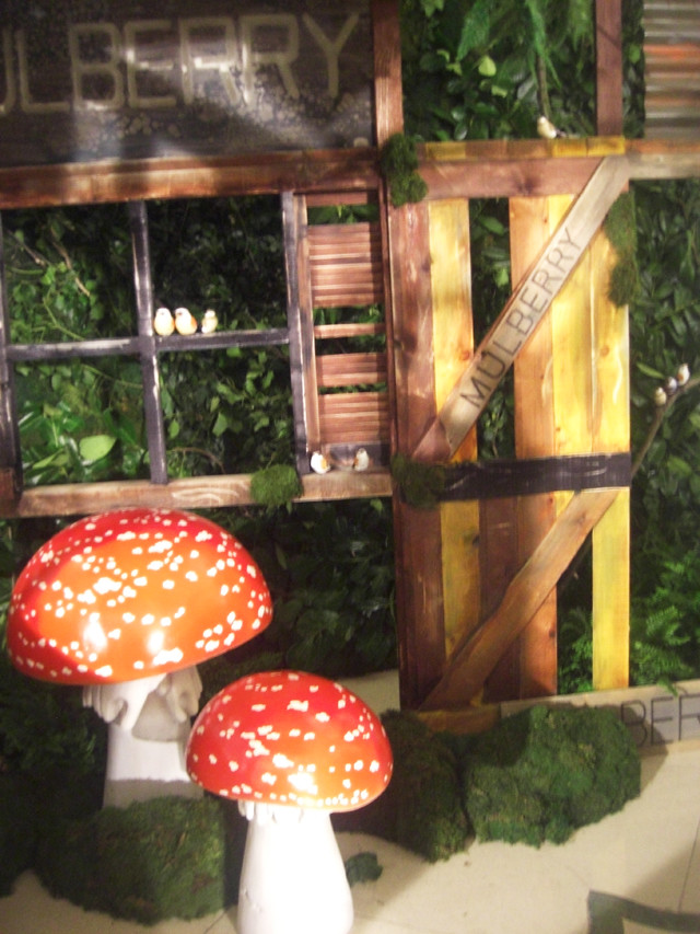 mulberry toadstools