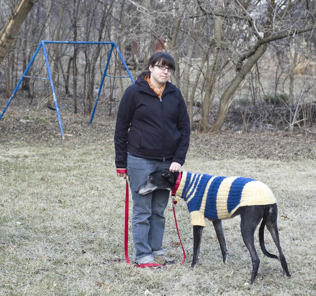 The worlds most recently posted photos of greyhound and sweater jaks jumper kristin roach tags blue greyhound wool yellow diy sweater pattern handmade bankloansurffo Images
