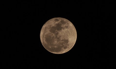Moon 03 19 2011 (Fernando Lenis) Tags: moon 3 lens lumix photos olympus 03 panasonic using fernando 19 2011 lenis 45200 epl1