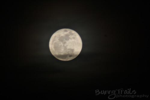 perigee moon2