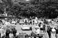 Concours d'Elegance (Thomas Hawk) Tags: auto car automobile ferrari hillsborough concoursdelegance otherkeywords concoursdelegance2008