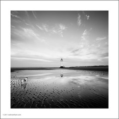 Talacre Beach (Ian Bramham) Tags: sunset blackandwhite bw dog lighthouse beach wales photography coast photo nikon image fineart photograph talacre d700 ianbramham 1635vr welcomeuk