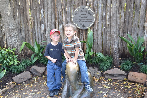 Fort Worth Zoo, Homeschool Day at Zoo