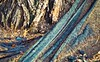 Landscaping (jaxxon) Tags: abstract macro tree texture garden lens prime nikon mud gardening landscaping grunge debris roots pad plastic textures dirt fabric bark micro fixed abstraction 365 mm nikkor vr afs 2011 d90 nikor project365 f28g gvr jaxxon jackcarson apicaday ayearinpictures nikond90 hpad nikkor105mmf28gvrmicro project365088 365088 088365 desklickr jacksoncarson jacksondcarson ayearinphotographs hpadw project3652011 2011yip 3652011 yip2011 2011ayearinpictures 2011365088 project365882011