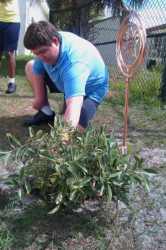 Morning Star Foodie Brandon Brown inspects the donated cumquat bush he took charge of to ensure its proper care.