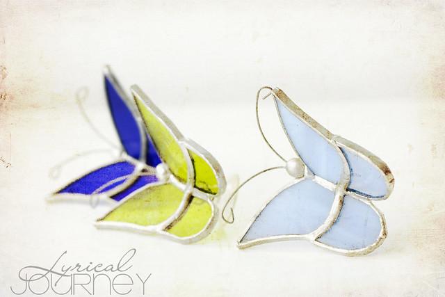Butterflies w/Kim Klassen's Warm Sun