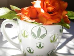 caneca Herbalife - by Euamocanecas.com
