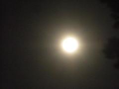 Harvest Moon - I (smaginnis11565) Tags: harvestmoon 91616 91716 moon newjersey moonovernewjersey
