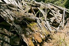 mt_garnet_cabin-25.jpg (BradPerkins) Tags: abandonedtown lines ghosttown ghost abandonedcabin garnet cabin montana wood shadows cabininthewoods