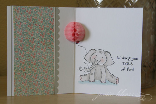 Birthday Elephant  3-D Surprise