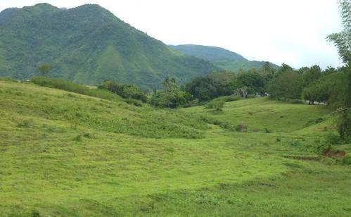 Negros-San Carlos-Bacolod (103)