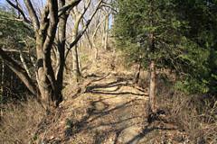 今熊山から刈寄山への道