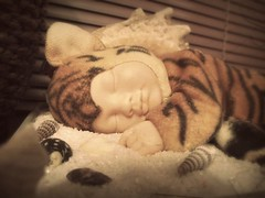 sleeping angel. (lizmonsterx) Tags: stilllife baby coral sand object tiger shell calm seashell conch