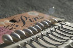 poppytalk white: pinned (jessica wilson {jek in the box}) Tags: white 2011 apr11 poppytalk springcoloursweek