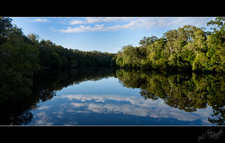 Esk River Reflections