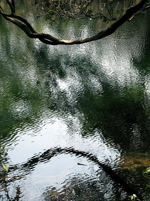 吹浦 丸池様 6