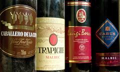 Vinos reliquia de gran valor se subastarán a beneficio en el Malbec World Day