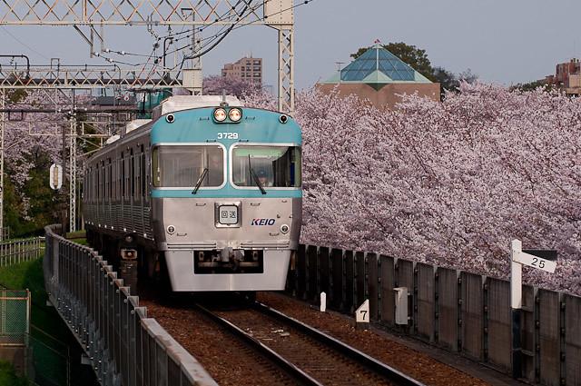 京王電鉄井の頭線3000系3029F