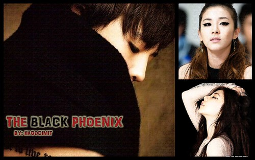 (10-2) The Black Phoenix by daragonlai