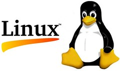 How the Linux OS Was Announced to the World in...