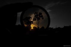 Sunset (MUSTAFASOD) Tags: blue trees houses sunset sky bw orange sun color leave clouds lens nikon focus hand filter nikkor dslr departure  d90